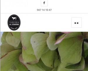 diseño-web-restaurante-burgos-0