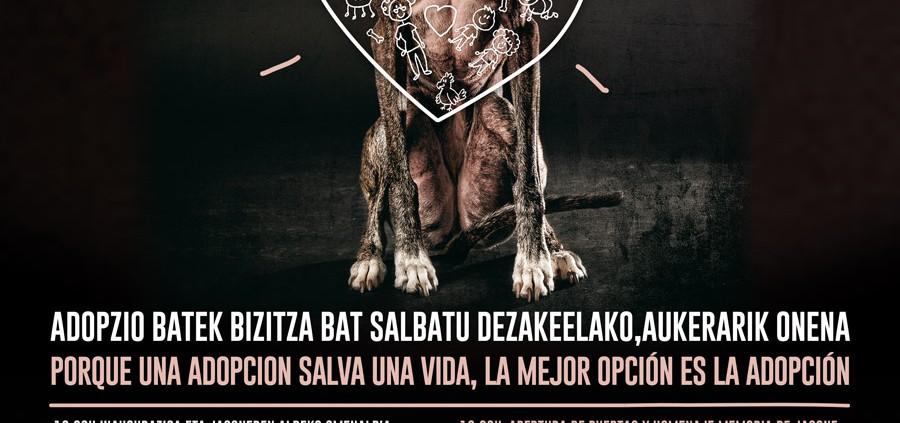 cartel-perros